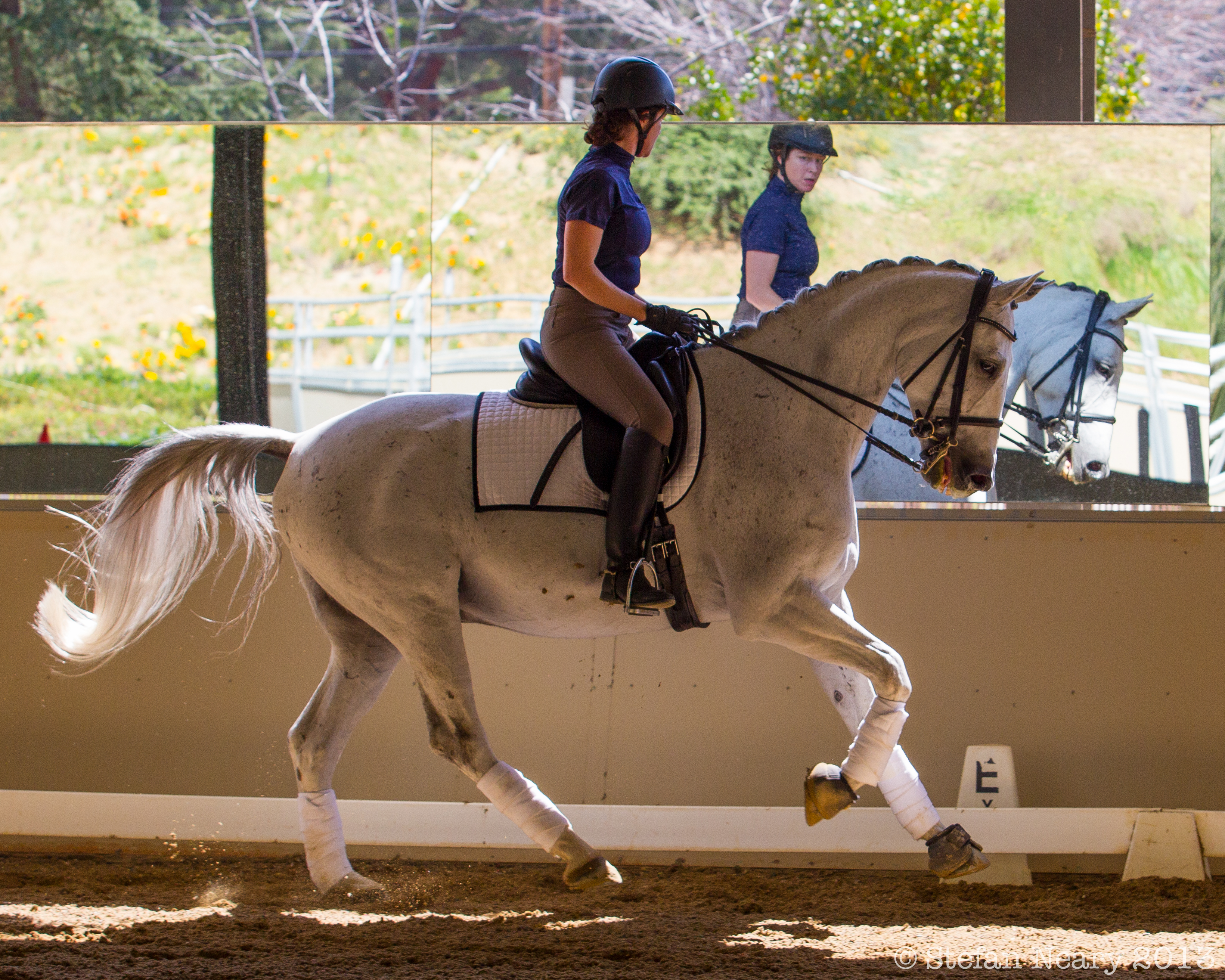 Dressage Moments 2