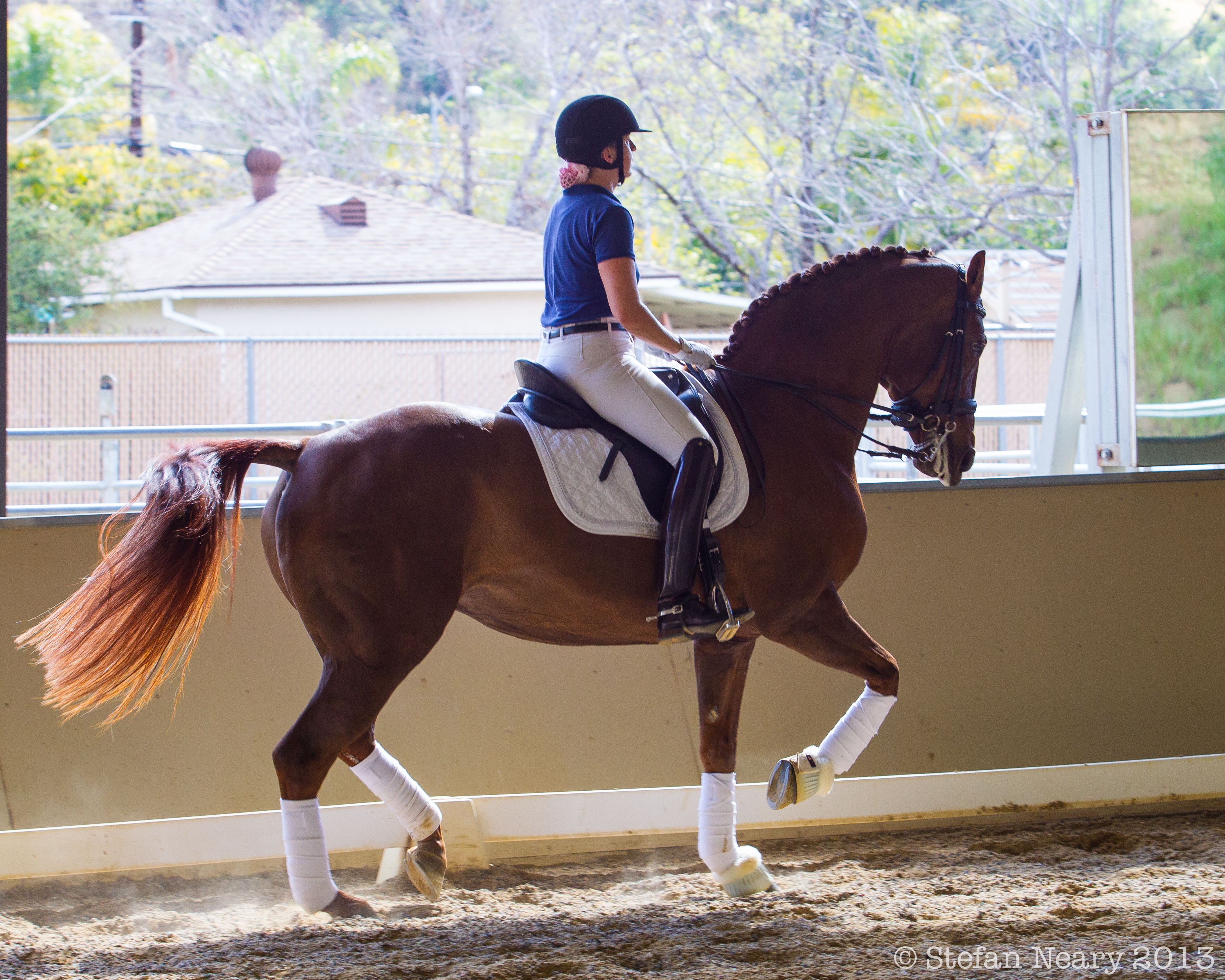 Dressage Moments 12